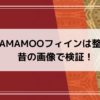 MAMAMOOフィィン整形