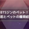 BTSジンのペット